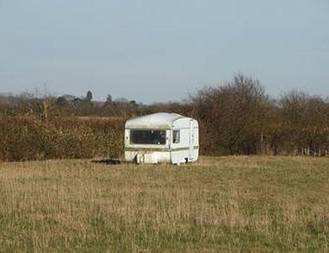beryl in field